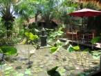 Journée piscine a Ubud au Ubud Inn - balisolo 2015 (14)