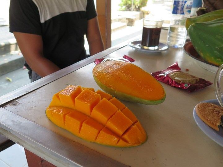 Pause sur la route de Negara (ouest de Bali) avec Agus - Balisolo 2015111