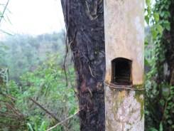 Balade dans les rizères de Langgahan avec Made Ocong - Balisolo (35)