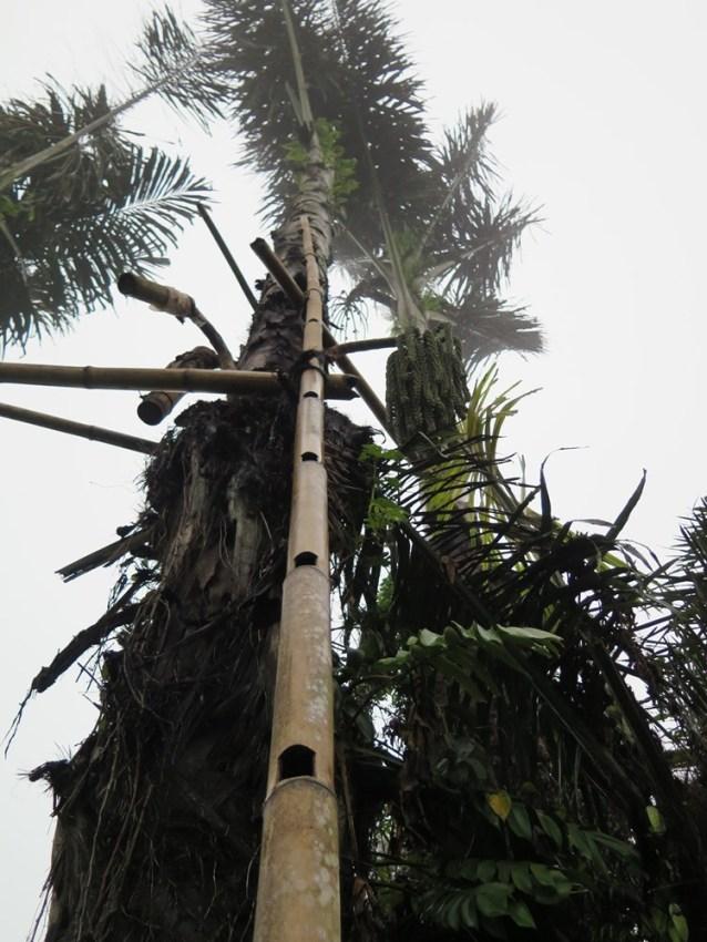 Balade dans les rizères de Langgahan avec Made Ocong - Balisolo (36)