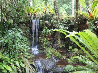 Le jardin botanique de Bali - Bali Botanic Garden - Bedugul - Balisolo (14)