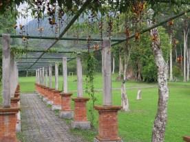 Le jardin botanique de Bali - Bali Botanic Garden - Bedugul - Balisolo (28)