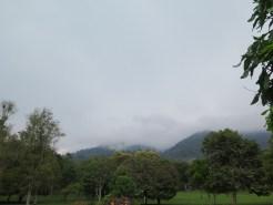Le jardin botanique de Bali - Bali Botanic Garden - Bedugul - Balisolo (30)