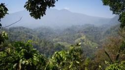 201910210936 Cascade Sekumpul Balisolo Blog Bali activité visite Indonésie - Canon -_-2