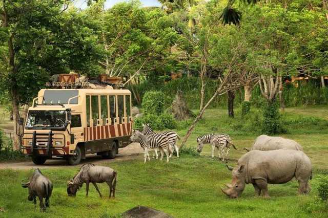 wisata favorite di bali - bali safari marine park