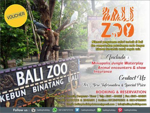 tour-bali-zoo