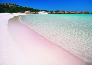 Unique Pink Sand Beachs In Indonesia Bali Tour And Hotel Reservations
