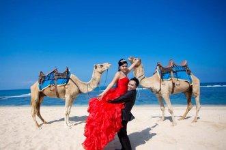bali, camel, ride, bali camel, nusadua, nusadua bali, pre wedding