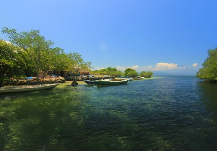 Enjoy the Natural Shade on  Nusa Lembongan