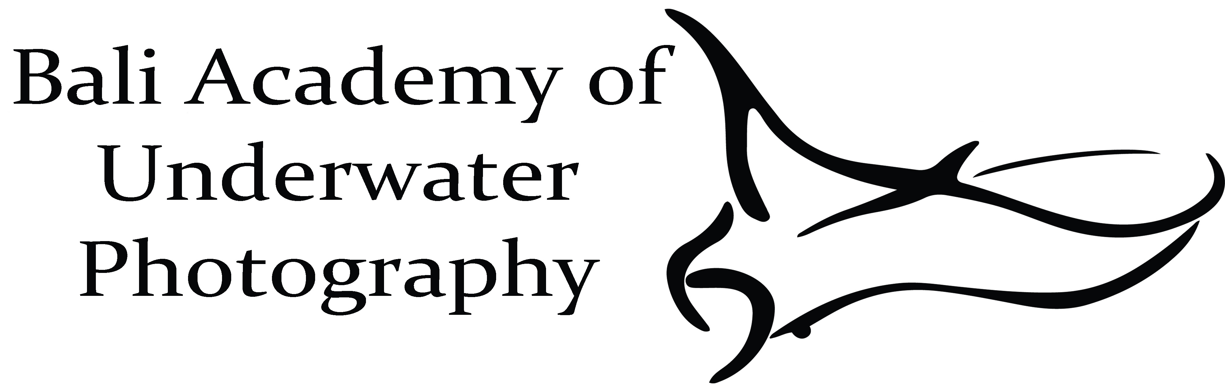 Bali Academy of Underwater Photography Logo