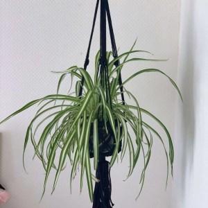 macramé plantenhanger zwart