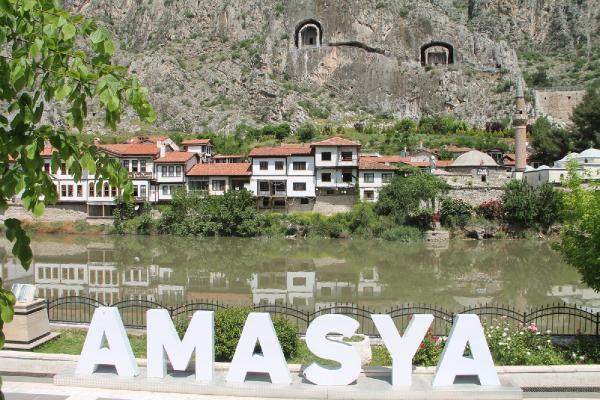 Amasya'da aşıda 'mavi kategori' sevinci