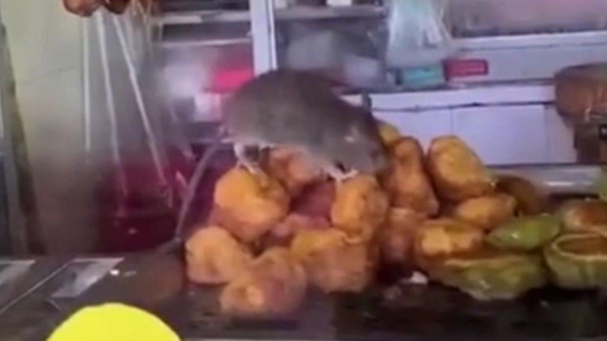 Çin'de etlerin üzerinde farenin gezdiği restoran kapatıldı
