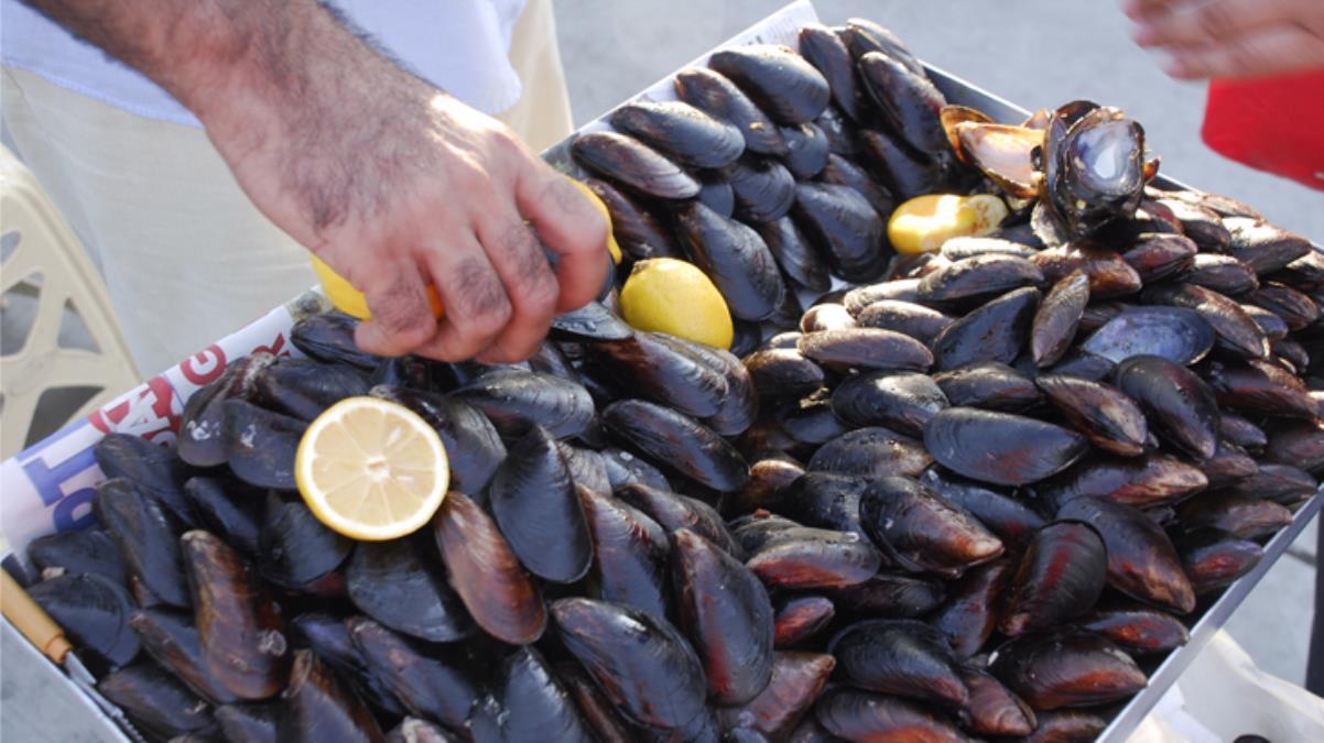 Nöroloji uzmanından müsilaj uyarısı: Bu dönemde kabuklu deniz ürünlerini tüketmeyin, felç riski var
