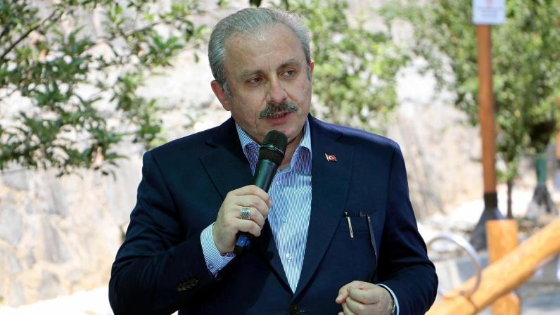 TBMM Başkanı Şentop: Türkiye tesir gücüne sahip bir ülke