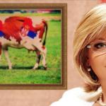 Jorgovankina krava muzara – Srbija