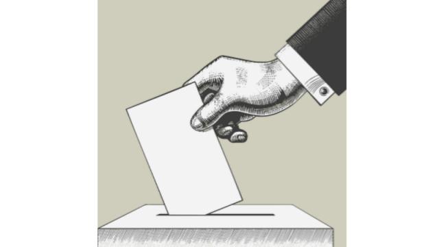 Završeni izbori za nacionalne savete nacionalnih manjina