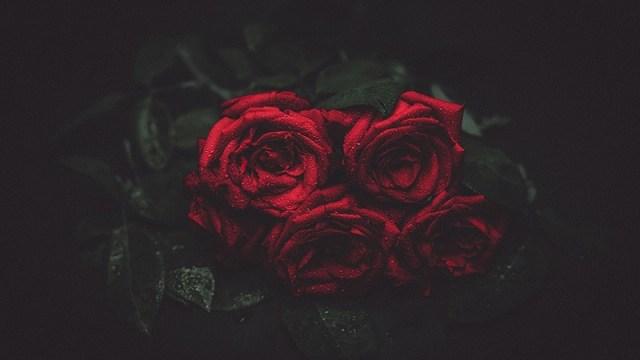 Rajko Dvizac: Za žene čija ljubav ima samo srećan početak a sredina i kraj su tužni i bolni