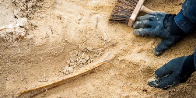Pronađeni ostaci divovskog dinosaurusa stari 130 miliona godina