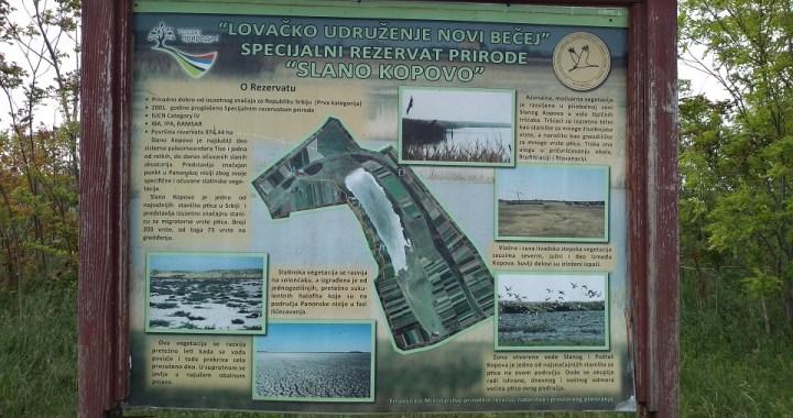 """Novi Bečej: Specijalni rezervat prirode """"Slano Kopovo"""" uskoro dostupan turistima"""