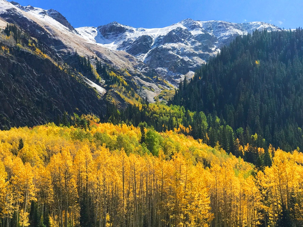 Autumn in the Rockies.
