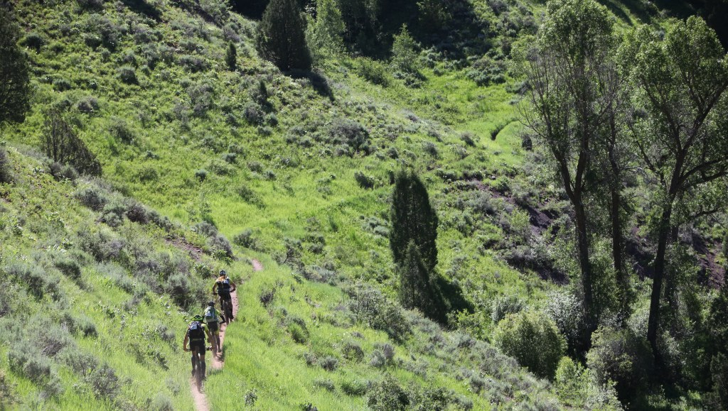 Teton Ogre Adventure Race - mountain bike trail