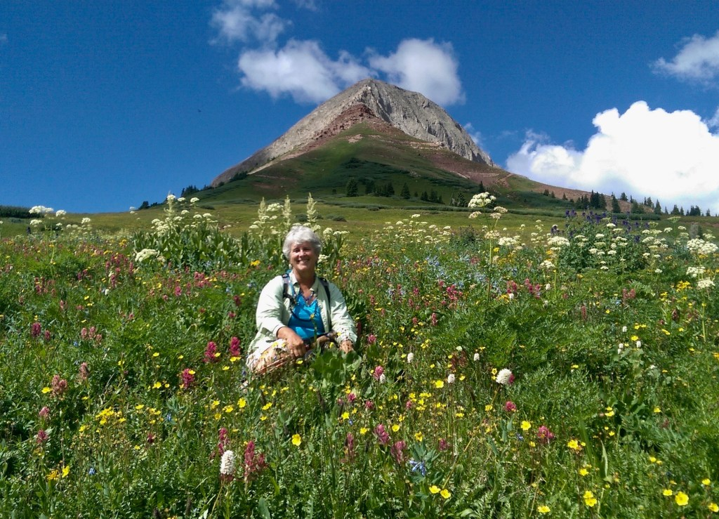 Rose Chilcoat in wildflowers at the base of Engineer Mountain in Southwest Colorado