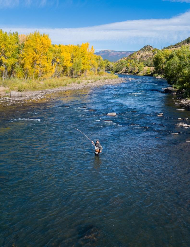 animas river fly fishing in the fall durango colorado