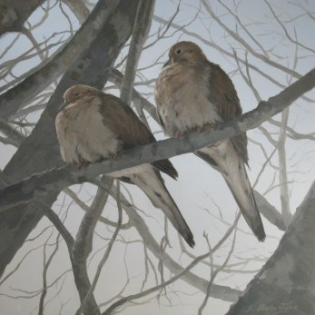 """""""Mourning Doves in Winter"""" 12"""" X 12"""" Acrylic on Russian Birch Panel"""