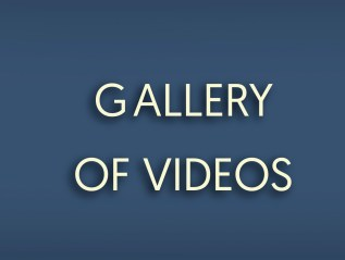 Gallery of Videos