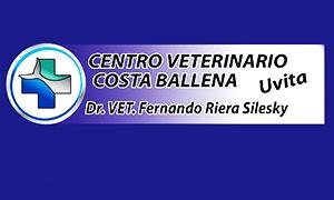 Veterinarias - cuidado de mascotas en Osa
