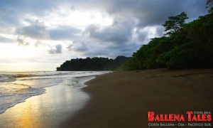 Playa Ballena - Ballena - Costa Rica - Photo by Dagmar Reinhard