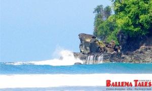 Playa Punta Achiote - Playa Hermosa - Costa Rica - Photo by Dagmar Reinhard