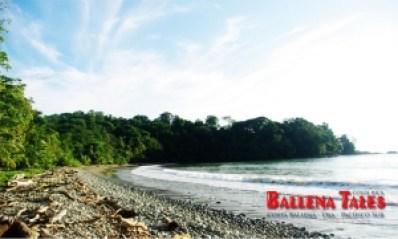 Playa Piñuela, Marino Ballena National Park, Costa Rica