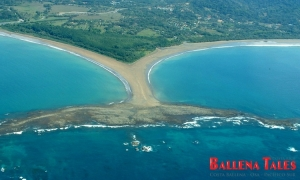 Aerial View of Whale's Tail, Playa Uvita, Marino Ballena National Park - It is an excellent surfing spot...
