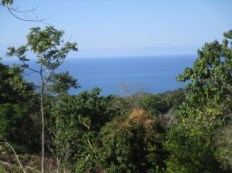 ID 17799 Gorgeous 17 Acre Ocean View Property