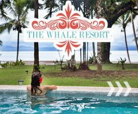 whale resort osa peninsula, osa peninsula lodging,