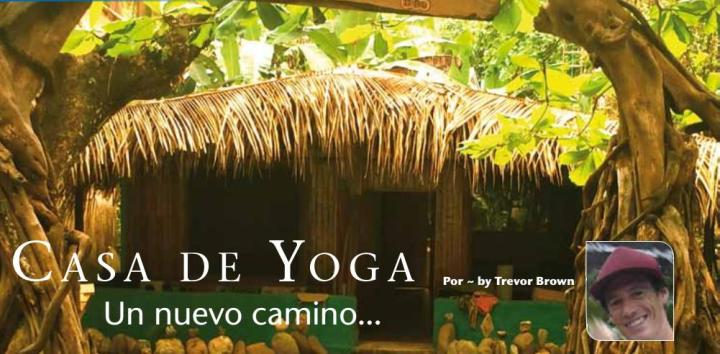 Casa de Yoga Dominical #puravida #costaballenalovers #osa #travel #costa-rica-vacations