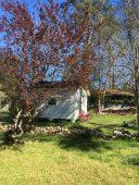 Ballentine-Spence House Spring 2017