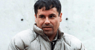 El Chapo Convicted