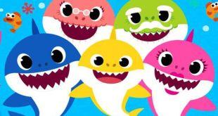 Baby Shark Show