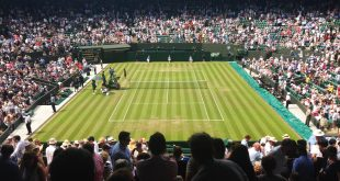 Wimbledon POlicy Payout