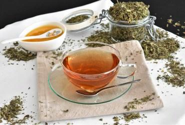 Spitzwegerich Tee-Rezept-ballesworld
