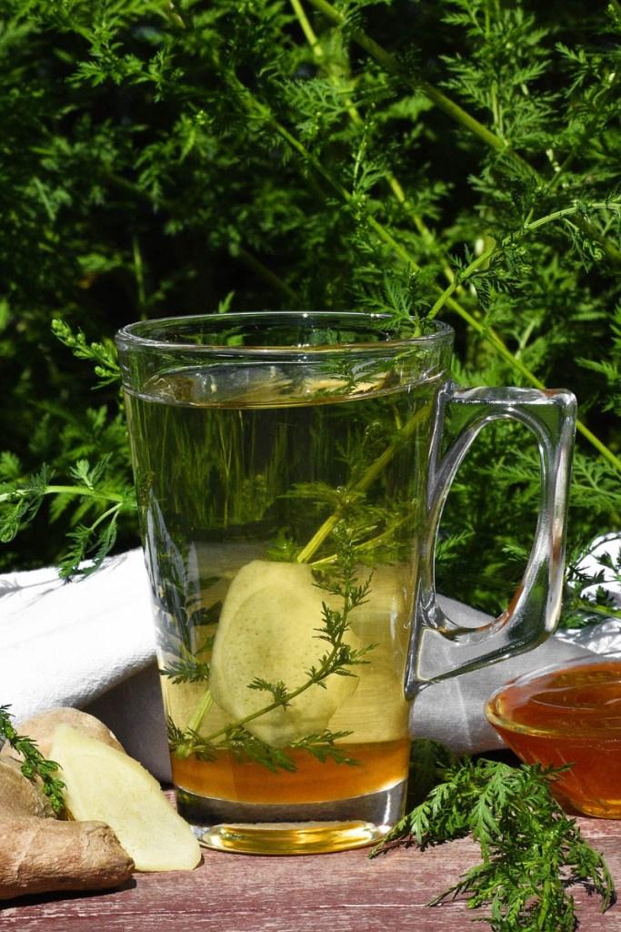 Beifuß-Ingwer-Honig Tee-Heilmittel-ballesworld