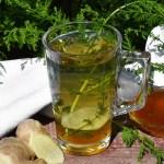 Beifuß-Ingwer-Honig Tee-Rezept-ballesworld