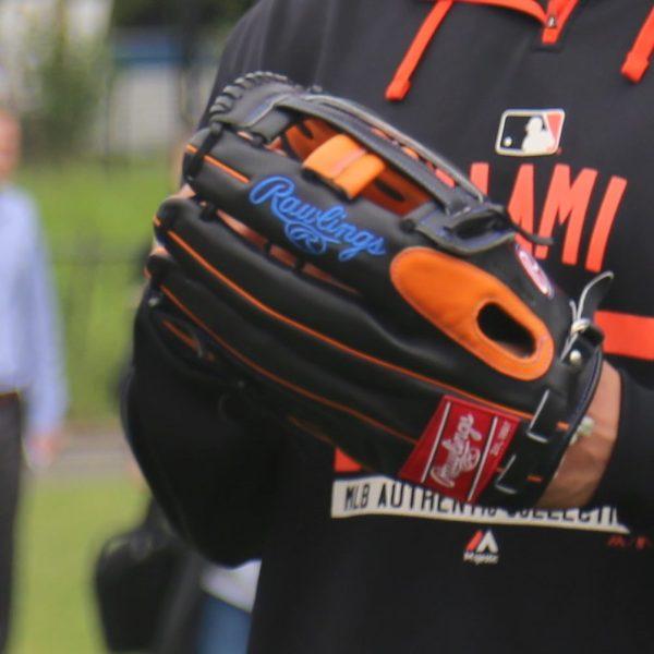 Giancarlo Stanton's Glove