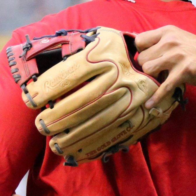 Addison Russell's Glove: Rawlings Pro Preferred PROS205-2BCWT