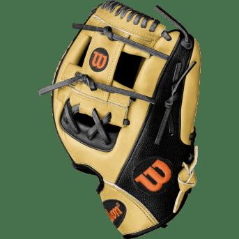 Jose Altuve's Glove for 2017 (1)