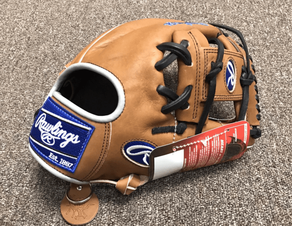 Rawlings Heart of the Hide PRO204-2GBG
