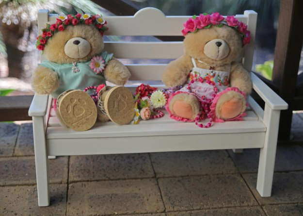 Puffles and Honey Adventures